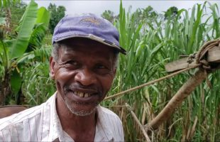 DISCOVERED! 18th Century SUGAR Production ALIVE In Rural Jamaica
