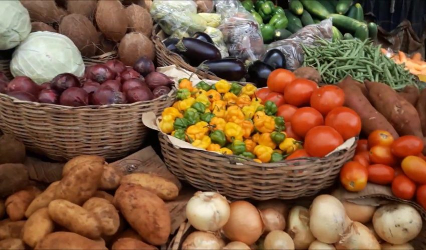 The Jamaican Market – Experience The Real Jamaica