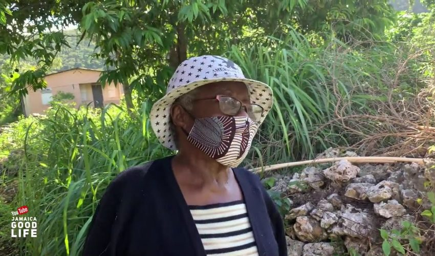95 YEAR OLD WOMAN IN JAMAICA P2 | EP492 | JAMAICA GOOD LIFE 🇯🇲