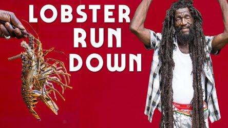 Lobster Rundown part 1…Jamaica Style!
