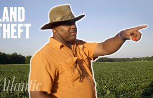 How Black Americans Were Robbed of Their Land