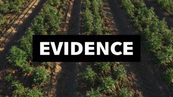 EVIDENCE/Last Prison Project