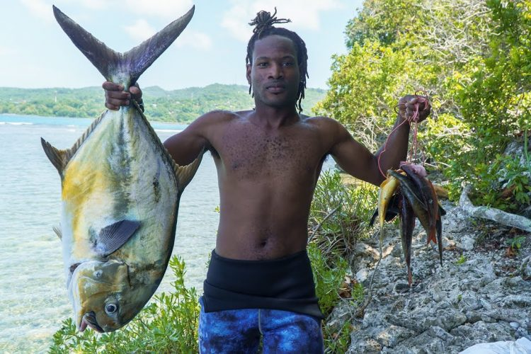 28lb Permit Jack Fish Got Caught Today While Spearfishing | Catch , Clean & Cook-Fishing Adventures